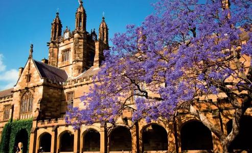 2020年澳洲八大热门课程硕士申请要求汇总!