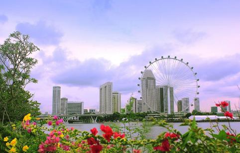 新加坡留学就业前景最好的专业盘点,你选对了吗?