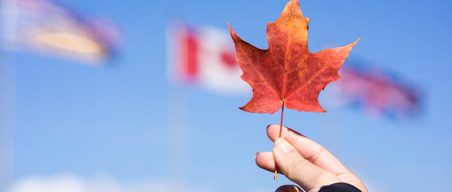 2020年去加拿大留学要求有多高?附申请要求+截止时间