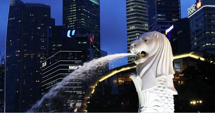 低龄留学新加坡,政府中小学、私立学校和国际学校哪一类学校更合适?